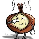 Cipolla (Onion)