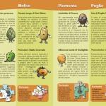 Brochure Alimos - I prodotti ortofrutticoli regionali Pagina_08_09