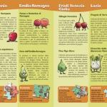 Brochure Alimos - I prodotti ortofrutticoli regionali Pagina_06_07